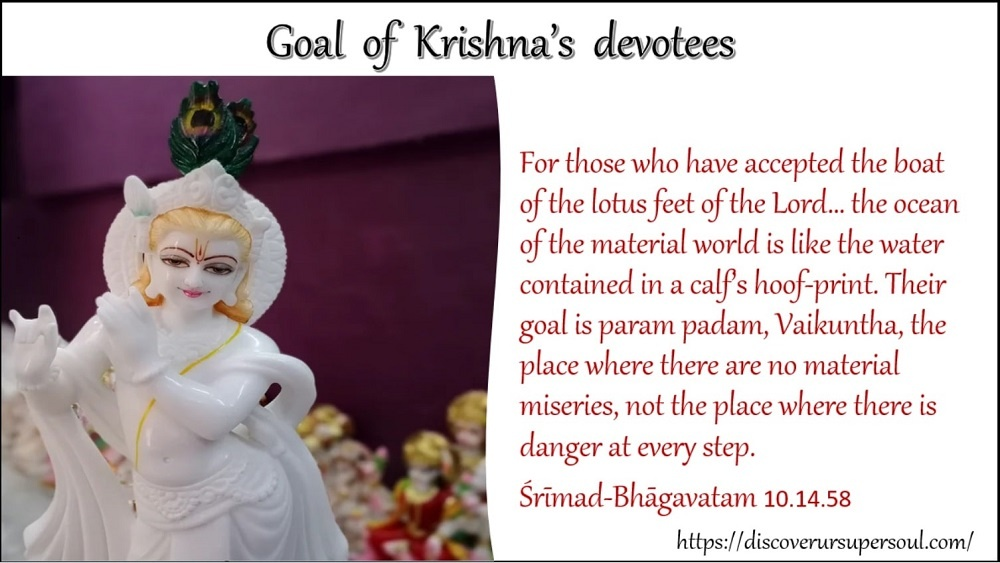 Goal of Krishna's devotees